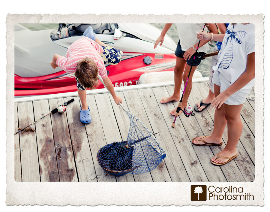 Faceless Friday 22 features a supersize horseshoe crab on an Isle of Palms dock