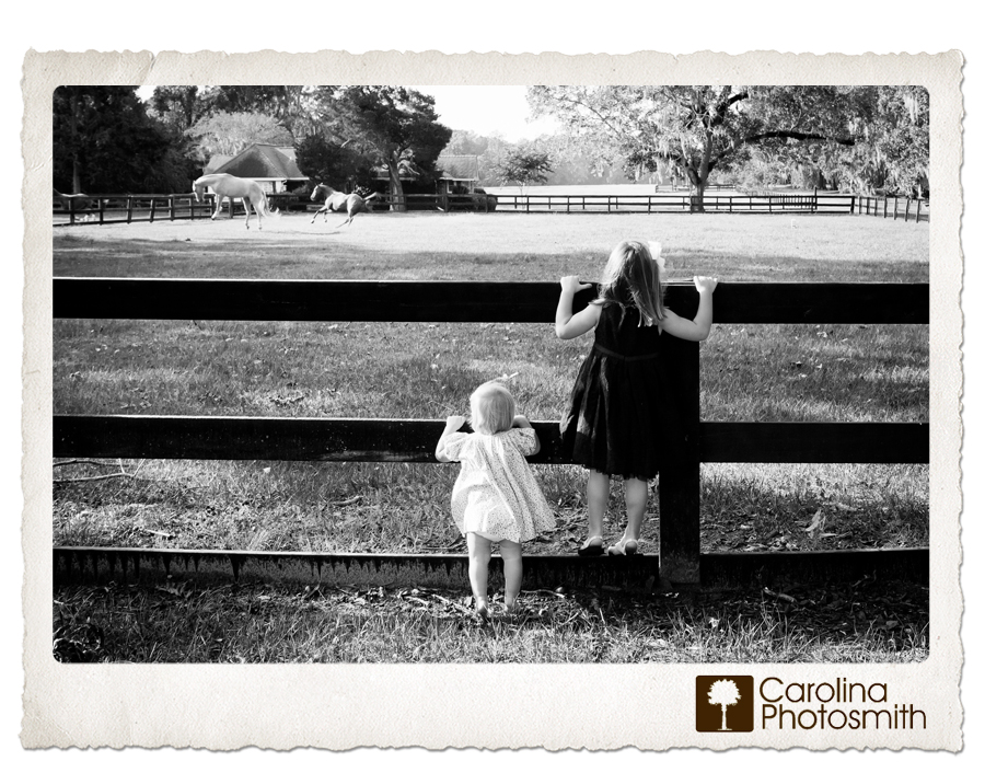Sisters peer through the fence to watch horses at Boone Hall Plantation