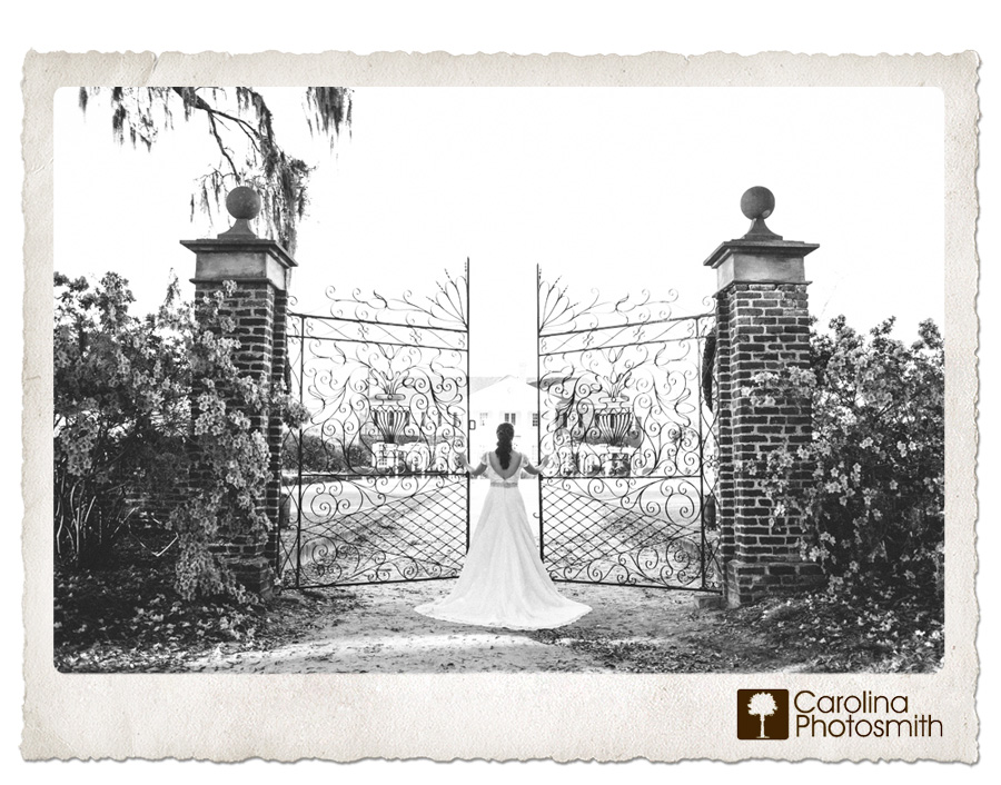 As seen in The Notebook. Beautiful bride looks like she owns the place. Wrought iron gates at Boone Hall. © Carolina Photosmith