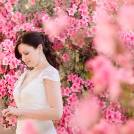 Azalea bride in a Charleston spring at Boone Hall Plantation © Carolina Photosmith